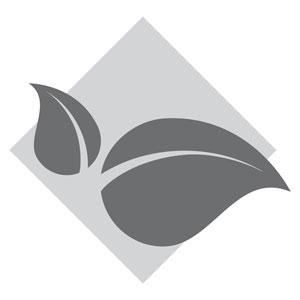 lydia-dainow-kosmetik-naturkosmetik-icon